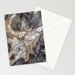 Petrified wood 3264 Stationery Cards