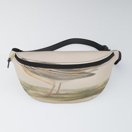Tawny Pipit Fanny Pack