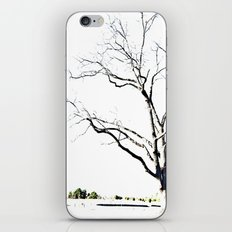 The Etching iPhone & iPod Skin