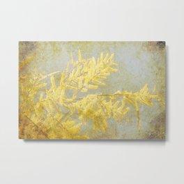 Golden Wattle Metal Print