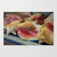 stickers Canvas Prints featuring Conch shells with stickers by Saucy Magazine