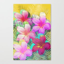 Hello Paradise Canvas Print