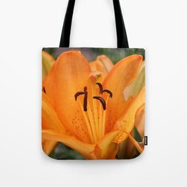 Just a Little More Tote Bag