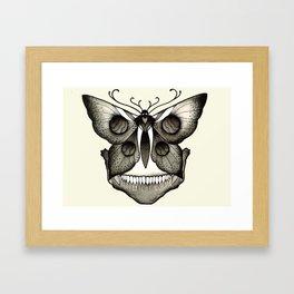 Moth bones Framed Art Print