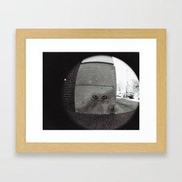 Eyes on the Street Framed Art Print