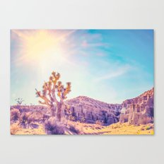 cactus at the desert in summer with strong sunlight Canvas Print