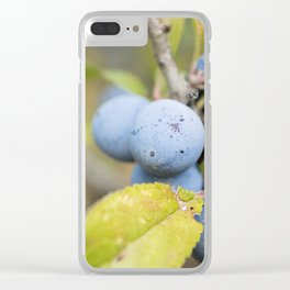 Blue fruits Clear iPhone Case