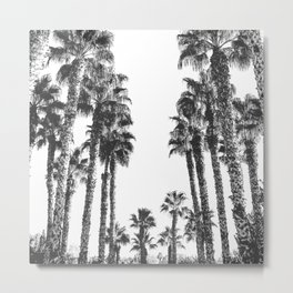 Palm Tree Days {2 of 2} Tropical Black and White Cali Art Print Metal Print