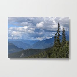 Muted Echo Metal Print