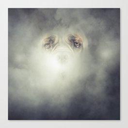 Dog Fog Canvas Print