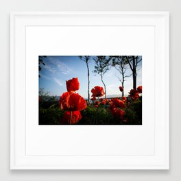 Flowers/Wind Framed Art Print