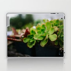 Succulent Rain Drop Laptop & iPad Skin