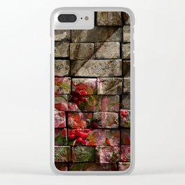Stone and Berries PhotoArt Clear iPhone Case