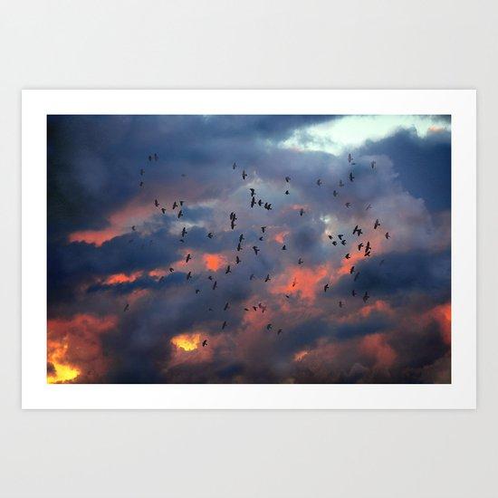 Feel Free ! Art Print