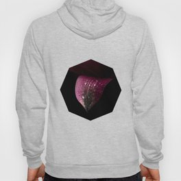 Purple petals with drops Hoody