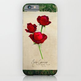 Herbal Apothecary: Rose iPhone Case
