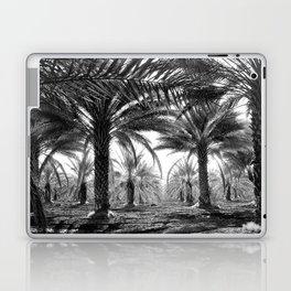 Vintage Palms Trees : Coachela Valley California 1937 Laptop & iPad Skin