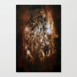 brown white Canvas Print