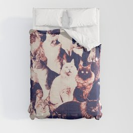 Cats. Forever. Comforters
