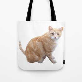 Neighbourhood cat Tote Bag
