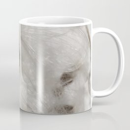 Milkweed seed and silk closeup Coffee Mug