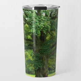 Old green oak Travel Mug