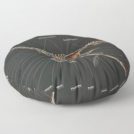 Citipati OsmolskaeSkeletal Study Floor Pillow