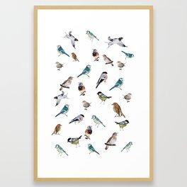 I love birds Framed Art Print