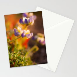 Calfornia Blooming Stationery Cards