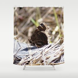Watercolor Insect Mourning Cloak Butterfly 01, Forlorn Forest Friend Shower Curtain