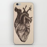 anatomical heart iPhone & iPod Skins featuring Anatomical Heart by Redmonks