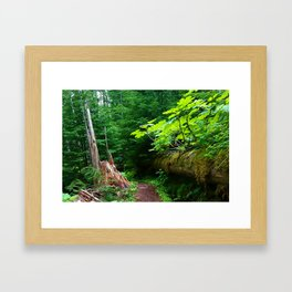 A path to an adventure Framed Art Print