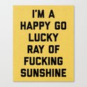 Ray Of Fucking Sunshine Funny Quote by envyart