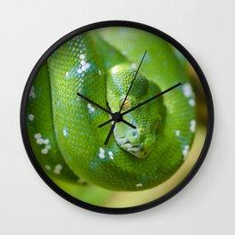 Green snake Wall Clock