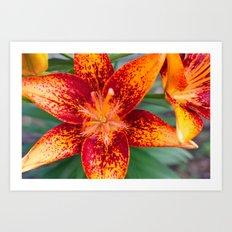 Red & Orange Art Print