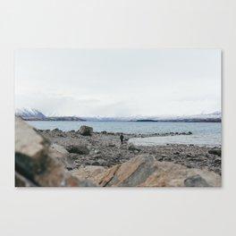 Lake Tekapo I Canvas Print