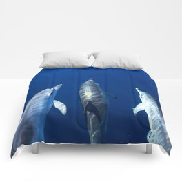 Playful and friendly dolphins Comforters