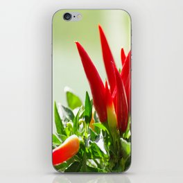 Chili peppers on the vine iPhone Skin