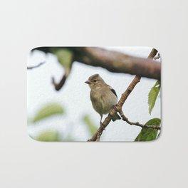 Young Chaffinch Songbird Bird Perching on a Branch - Wales, UK Bath Mat