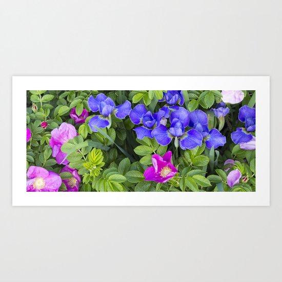 Garden Bed Art Print