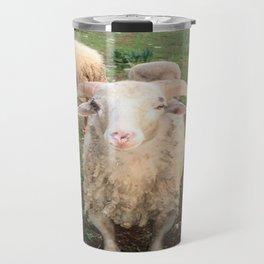 A Flock Of Sheep In A Rural Setting Travel Mug
