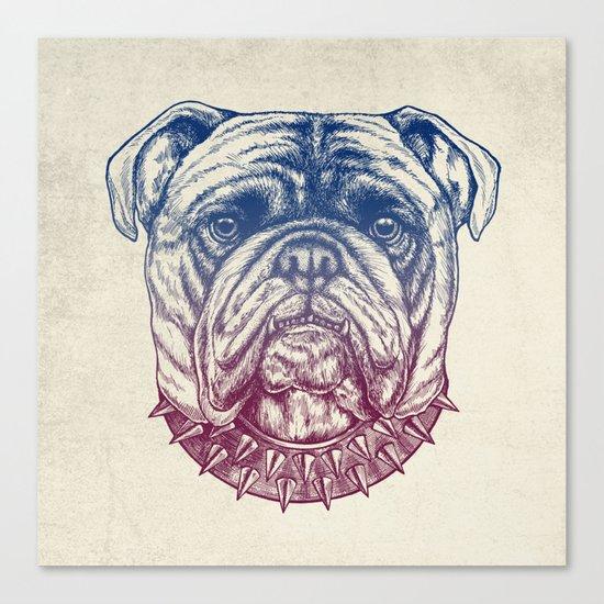 Gritty Bulldog Canvas Print