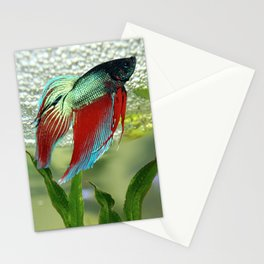 Bubble Nest Builder Stationery Cards