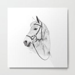 Inka horse Metal Print