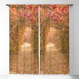 Marvellous Tree Garden Path Ultra HD Blackout Curtain