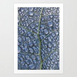 Cool water drops dew texture leaf Art Print