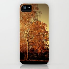 Morgenstimmung auf der Heide iPhone Case