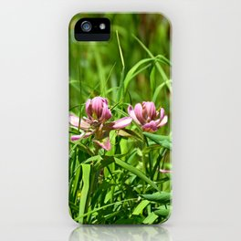 Lake Irene Alpine Floral Study 6 iPhone Case