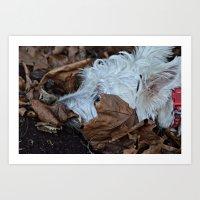 westie Art Prints featuring Hiding westie by  Alexia Miles photography