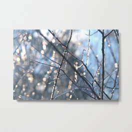 Ice crystal encrusted branches in the sunlight Metal Print